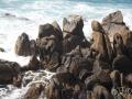 cliffs-er.jpg