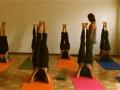 shoulder-stand-yoga.jpg